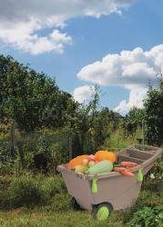 Zahradní vozík - trakař mod.085