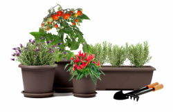 Plastové květináče a truhlíky Plastecnic e-Terrae