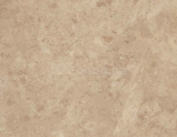 Amtico First Stone SF3S4599 Bottocino Cream