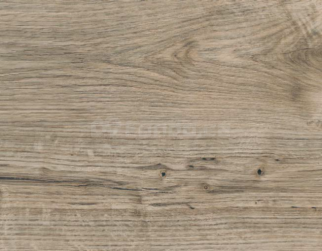 Amtico First Wood SF3W2531 Sun Bleached Oak