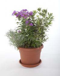 Plastový květináč Unica Plastecnic