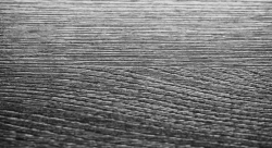Struktura povrchu: WA Brushed wood structure