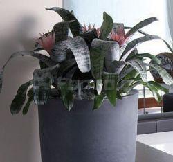 Plastový květináč VASO TONDO ALTO
