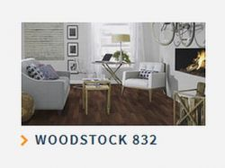 WOODSTOCK 832